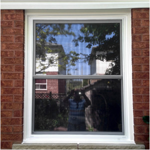 Single Hung Window 002