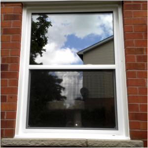 Single Hung Window 003