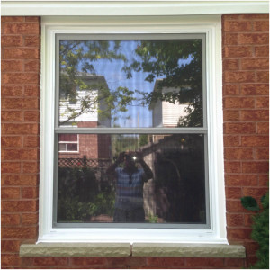 Single Hung Window 008