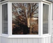 Bay Window 003